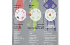 ЭКО оттрех родителей: прорыв вобласти вспомогательных репродуктивных технологий?